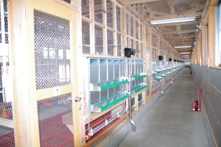畜産試験場(種鶏舎・ふ卵舎)